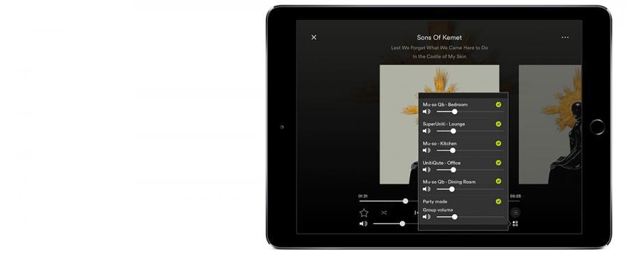 Naim Multiroom App